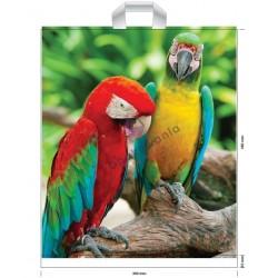 Reklamówki LDPE 39x45 Papuga 10szt
