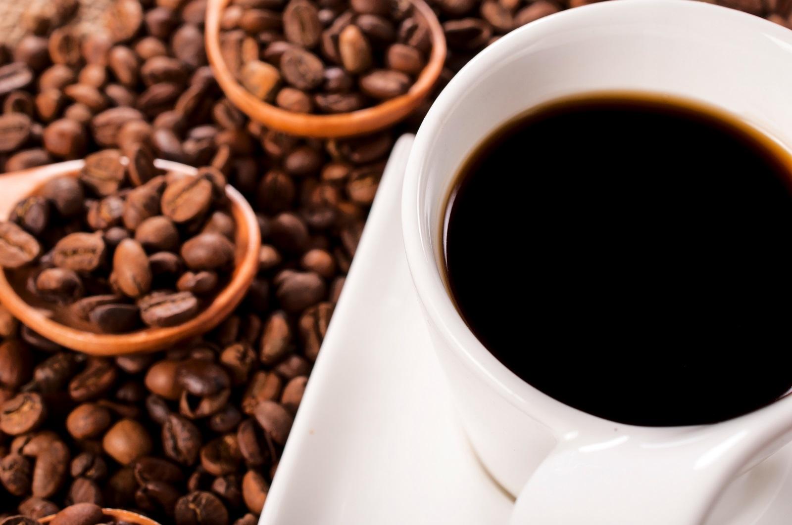 Wszystko co warto wiedzieć o kawie